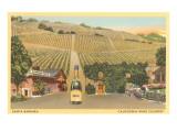 Santa Barbara  California Wine Country