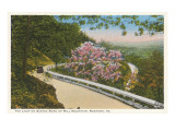 Scenic Mountain Road  Roanoke  Virginia