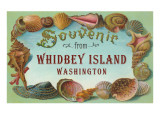 Souvenir from Whidbey Island  Washington