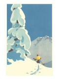Skier  Graphics