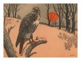 Woodcut of Hawk