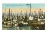 Fishing Boats  Seattle  Washington