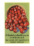 Apple Basket from Virginia