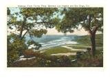 Torrey Pines Beach  San Diego County  California