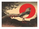 Woodcut of Pheasant