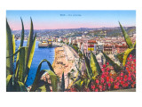 General View of Nice  France