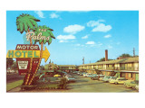 The Palms Motor Hotel  Vintage Motel