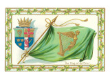 St Patricks Day  Flag of Old Erin
