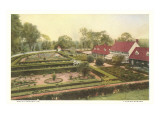 Flower Garden  Mt Vernon  Virginia