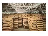 Largest Wheat Warehouse  Tacoma  Washington