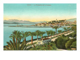 View of the Croisette  Cannes  France
