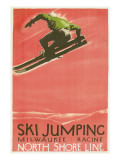Ski Jumping Poster