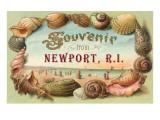Souvenir from Newport  Rhode Island