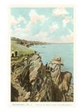 Cliff Walk  Newport  Rhode Island