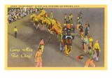 Chinese New Year Parade  San Francisco  California