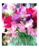 Mixed Sweetpeas in a Jar