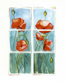Poppies at the Window