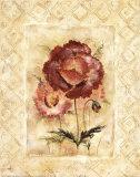 Rose Radiance