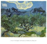 Les oliviers, 1889 Reproduction d'art par Vincent Van Gogh