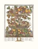 Twelve Months of Fruits  1732  June