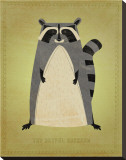 The Artful Raccoon