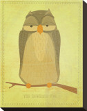 The Sensible Owl