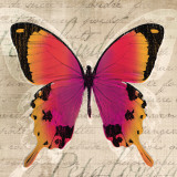 Butterflies III