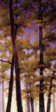 Purple Wood II