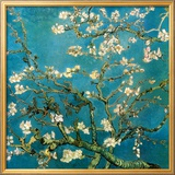 Almond Branches in Bloom  San Remy  c1890