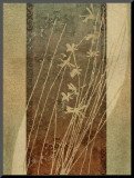 Tall Grasses II
