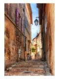Arles and Van Gogh