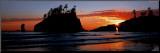 Olympic National Park  Washington state