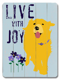 Live with Joy