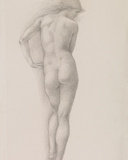 Nude study of Andromeda