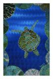 Turtle on Blue