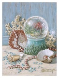Sea Shell Collection III