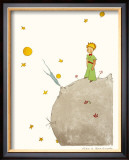 Petit Prince et son Asteroide B 612