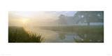 River Aln Dawn