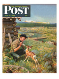 """Feeding Fawn Near Flowering Field"" Saturday Evening Post Cover  May 27  1950"
