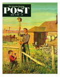 """Putting Up Birdhouses"" Saturday Evening Post Cover  June 9  1951"