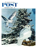 """Snowy Owls"" Saturday Evening Post Cover  September 14  1957"