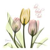 Easter Bonnet I Tulips