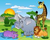 African Animals I