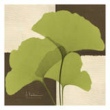Ginkgo Green Trio