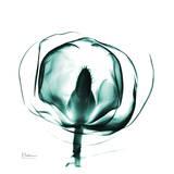 Gracious Green Bulb