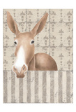 Mule Posing