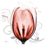 Happy Tulip in Red