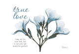 Blue Oleander  True Love