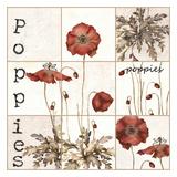 Poppies Abundant