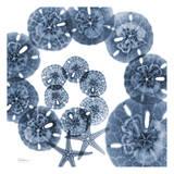 Collage of Sand Dollars and Starfish Reproduction d'art par Albert Koetsier
